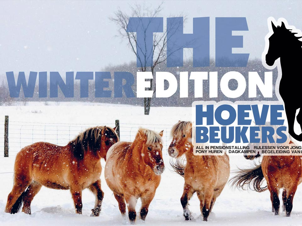 Hoeve-Beukers_manage-rijles-paarden_winter-edition